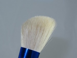 MAC-Enchanted-Eve-Essential-Brush-Kit6