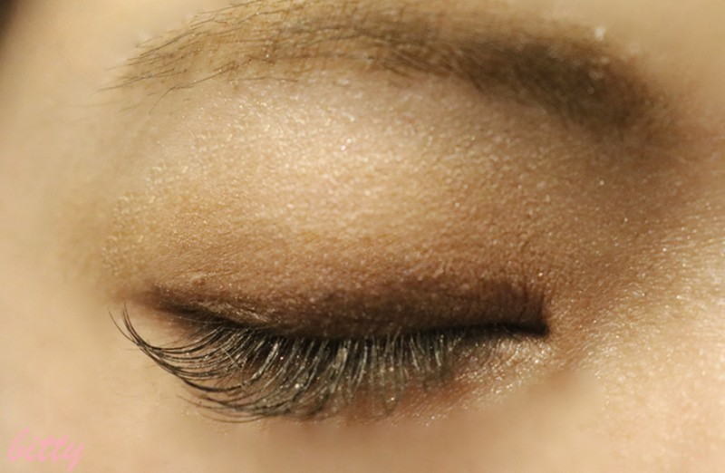 elegance-eyeshadow-color2